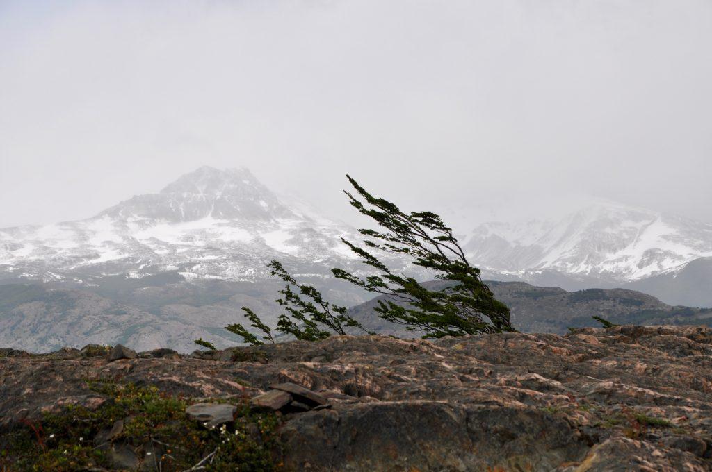 Im Nationalpark Torres del Paine spielt einer die Hauptrolle: der Wind.