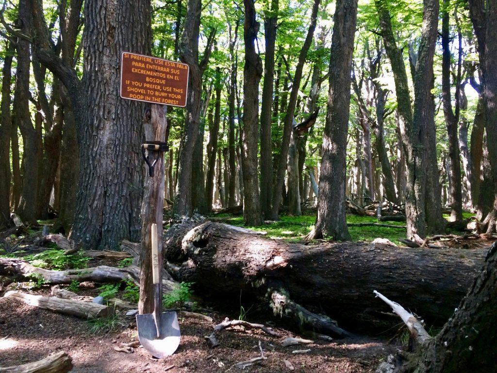 Schaufel im Wald als Toilette am Campamento Poincenot bei El Chaltén.