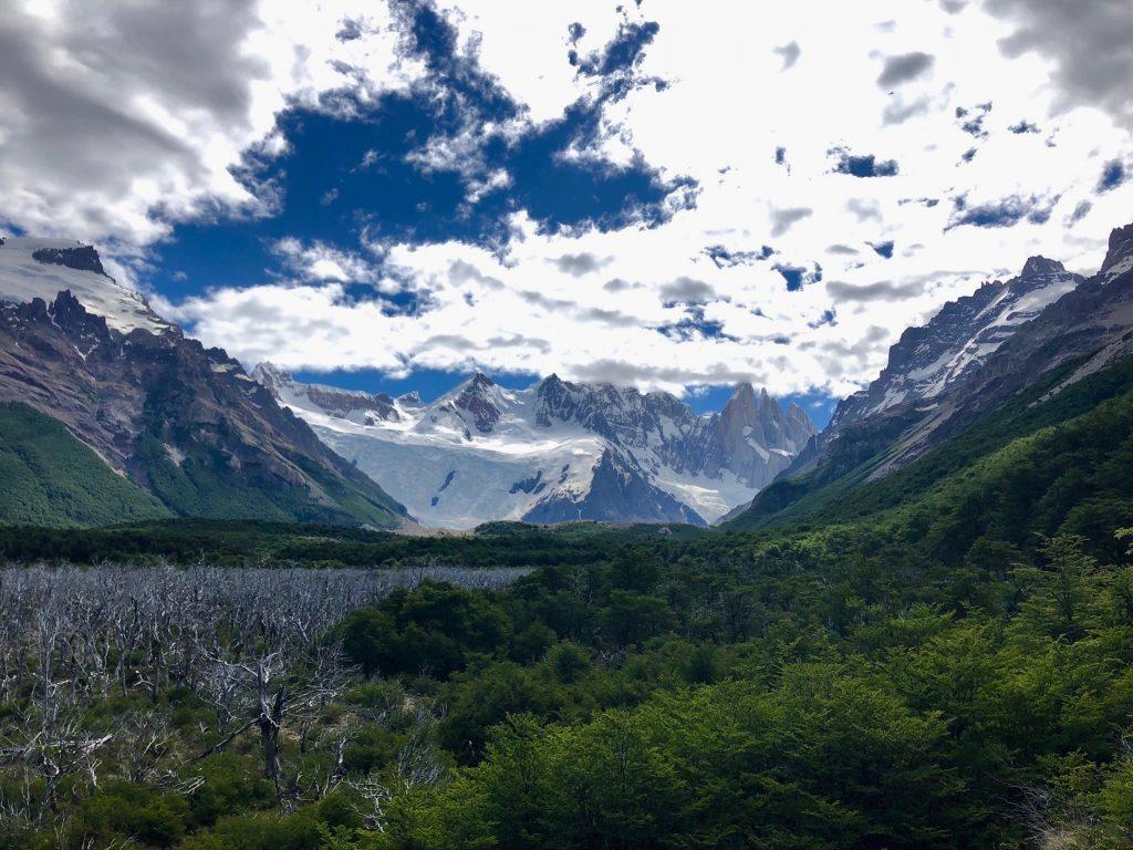 Der spitze Granitfelsen Cerro Torre zeichnet sich am Horizont hinter einem grünem Buschland ab.